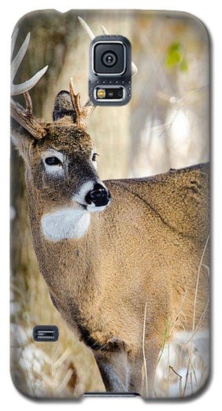 Winter Buck Galaxy S5 Case