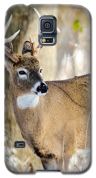 Winter Buck Galaxy S5 Case