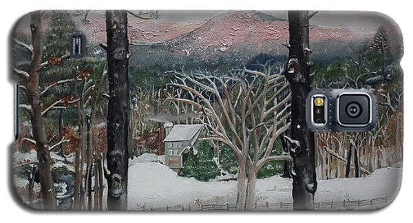 Winter - Cabin - Pink Knob Galaxy S5 Case by Jan Dappen