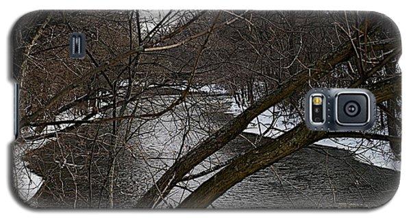 Winter Cedar Galaxy S5 Case