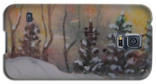 Galaxy S5 Case featuring the painting Winter Cold by Gretchen Allen