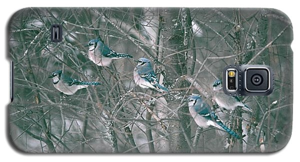 Galaxy S5 Case featuring the photograph Winter Conference by David Porteus