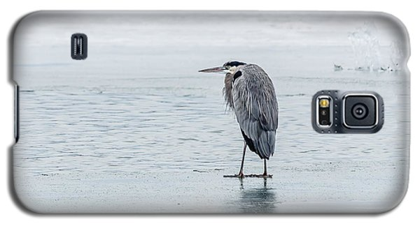 Galaxy S5 Case featuring the photograph Winter Contemplation by Yeates Photography
