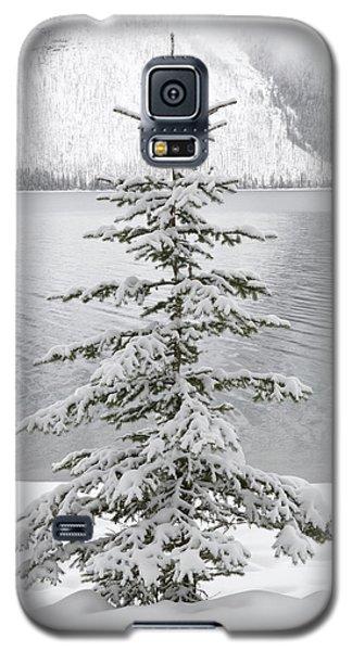 Winter Decor Galaxy S5 Case