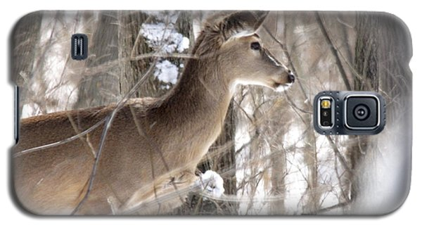Winter Deer Galaxy S5 Case