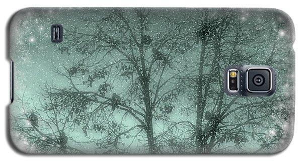 Winter Doves Galaxy S5 Case by Diane Alexander