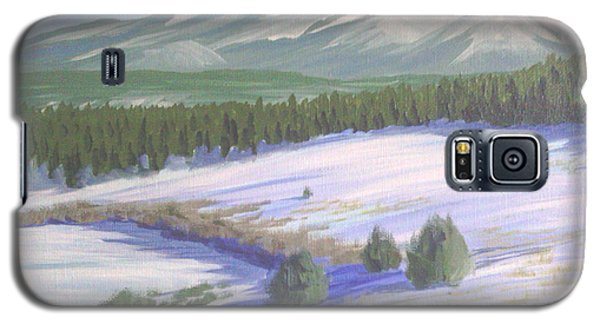 Winter Eagle At Mormon Lake Galaxy S5 Case