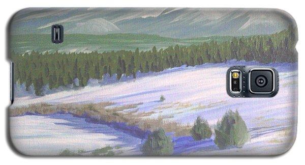 Winter Eagle At Mormon Lake Galaxy S5 Case