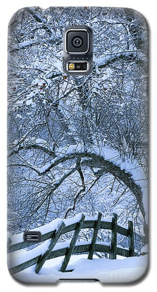 Winter Fence Galaxy S5 Case by Alan L Graham