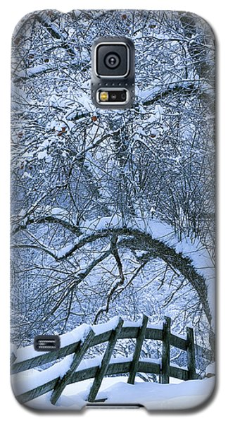 Winter Fence Galaxy S5 Case