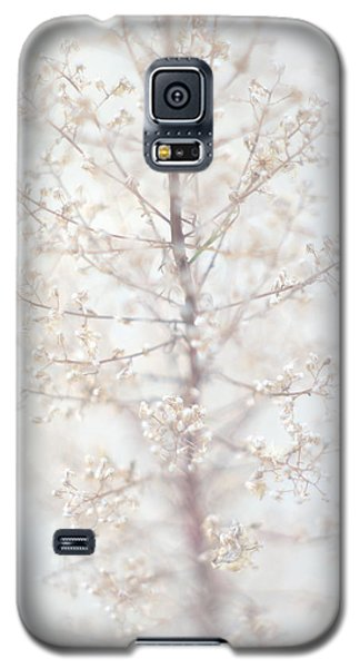 Galaxy S5 Case featuring the photograph Winter Flower by Suzanne Powers