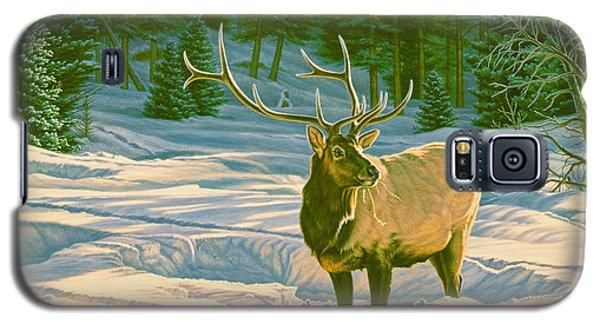 Bull Galaxy S5 Case - Winter Forage - Elk by Paul Krapf