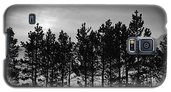 Galaxy S5 Case featuring the photograph Winter Forest by Frodi Brinks