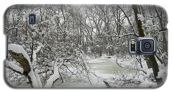 Winter Forest Series 3 Galaxy S5 Case by Verana Stark