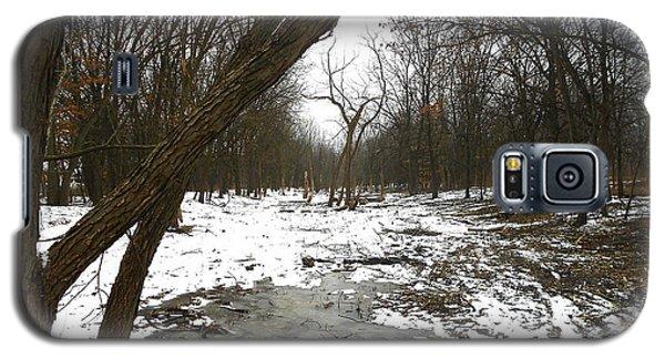 Winter Forest Series Galaxy S5 Case by Verana Stark