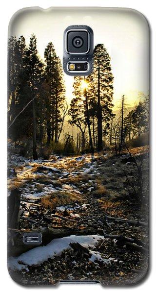 Winter Gold Galaxy S5 Case