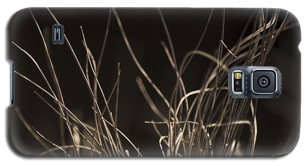 Galaxy S5 Case featuring the photograph Winter Grass 2 by Yulia Kazansky