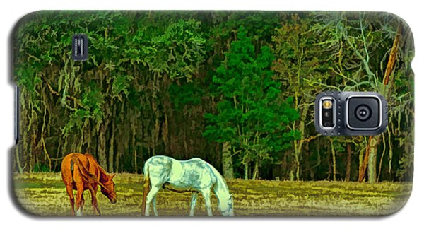 Winter Grazing In North Florida Galaxy S5 Case by Lewis Mann