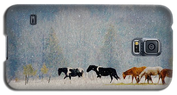 Winter Horses Galaxy S5 Case by Ann Lauwers