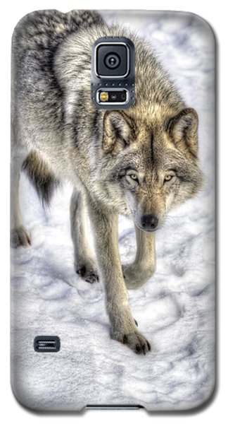 Winter Hunter Galaxy S5 Case