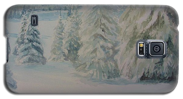 Galaxy S5 Case featuring the painting Winter In Gyllbergen by Martin Howard