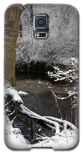 Winter In Rotary Park 2 Galaxy S5 Case