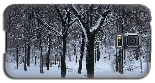 Galaxy S5 Case featuring the photograph Winter In The Park by Dora Sofia Caputo Photographic Art and Design