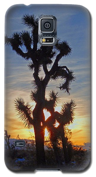 Winter Joshua Galaxy S5 Case by Suzette Kallen