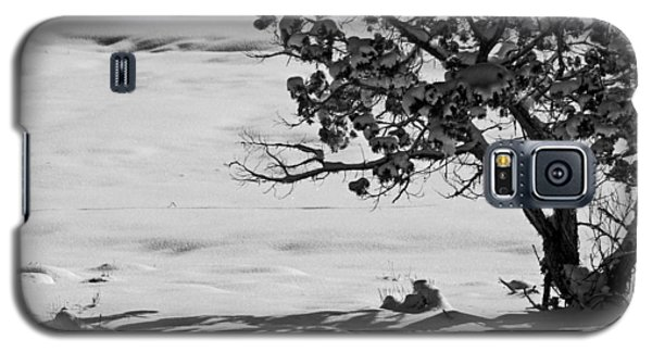 Galaxy S5 Case featuring the photograph Winter Juniper  by Eric Rundle