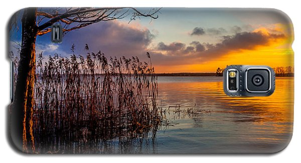 Winter Lake Sunset With A Tree Lighted In Red And Orange  Galaxy S5 Case