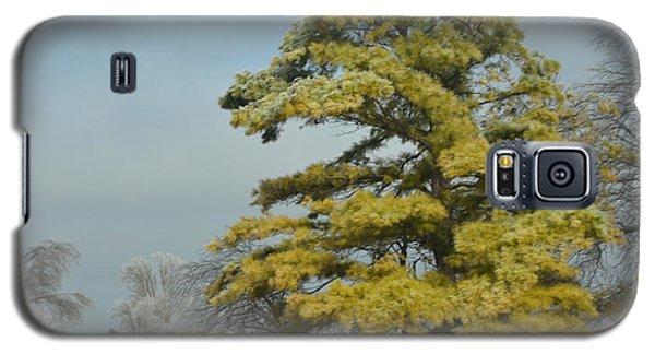 Galaxy S5 Case featuring the photograph Winter Landscape by Debra Martz