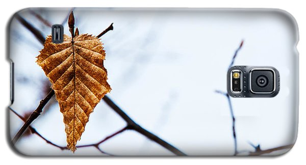 Galaxy S5 Case featuring the photograph Winter Leaf by Kennerth and Birgitta Kullman