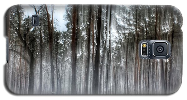 Winter Light In A Forest With Dancing Trees Galaxy S5 Case