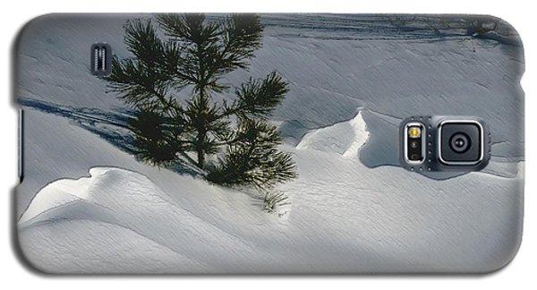 Winter Light Galaxy S5 Case