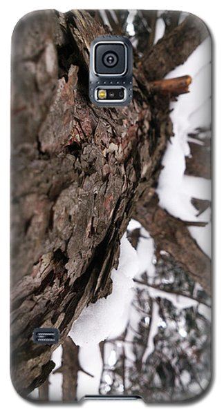 Winter Galaxy S5 Case by Lucy D