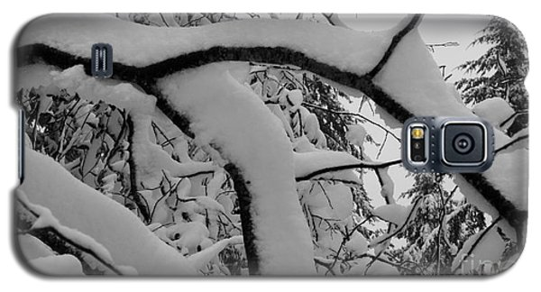 Winter Magic Galaxy S5 Case