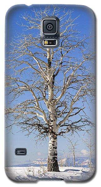 Winter Galaxy S5 Case by Muhie Kanawati