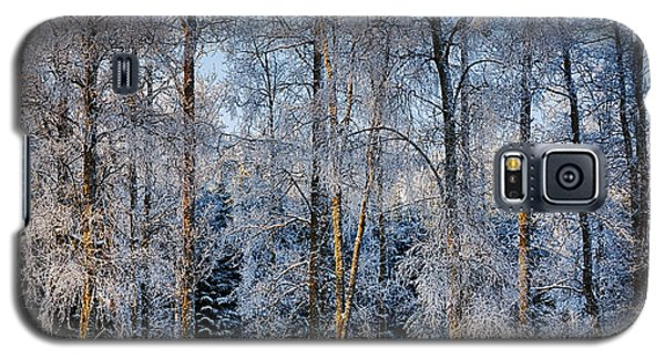 Winter Nature Ans Scenery Galaxy S5 Case