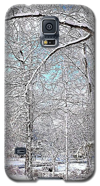 Winter On A Spring Day Galaxy S5 Case