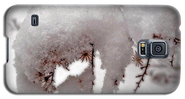 Winter On Aberdeen Galaxy S5 Case