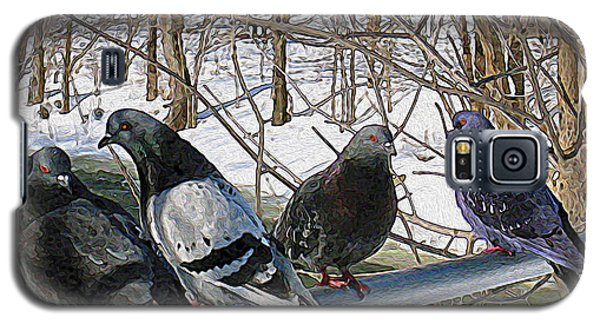 Winter Pigeon Party Galaxy S5 Case