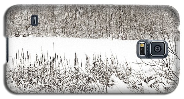 Winter Pond Galaxy S5 Case