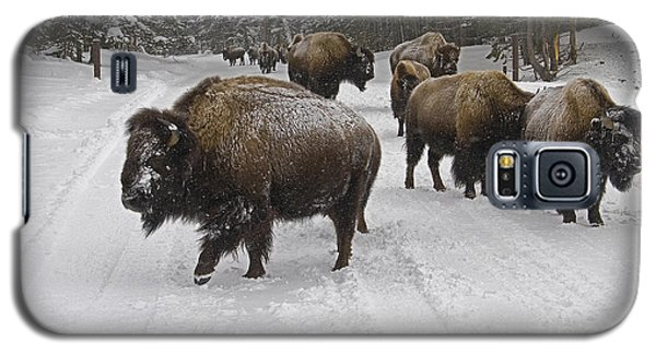 Winter Procession-signed Galaxy S5 Case by J L Woody Wooden