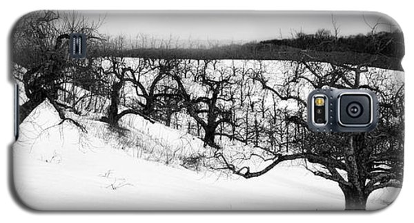 Galaxy S5 Case featuring the photograph Winter by Raymond Earley