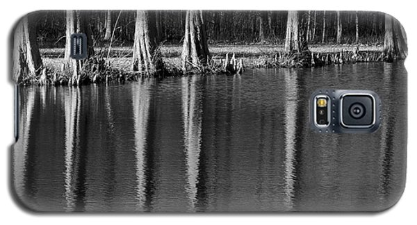Winter Reflections - Cypress Tree Art Print Galaxy S5 Case