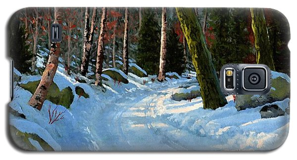 Winter Road Galaxy S5 Case