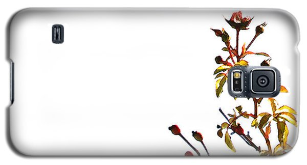 Galaxy S5 Case featuring the photograph Winter Rose by Linda Shafer