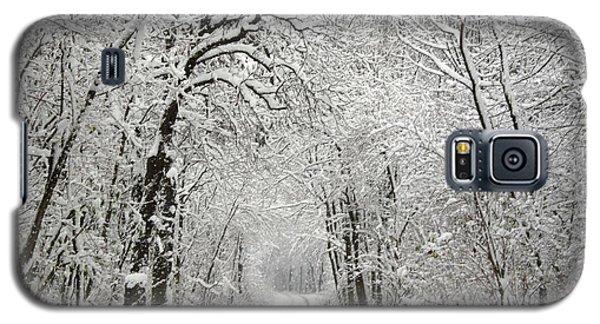Winter Scene 2 Galaxy S5 Case