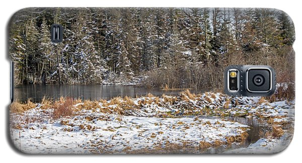 Winter Scene Maine  Galaxy S5 Case by Trace Kittrell