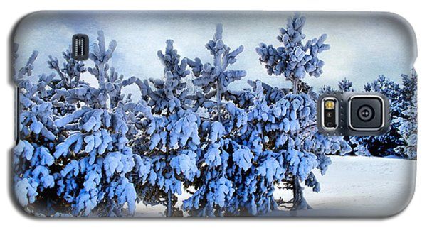 Winter Serenity  Galaxy S5 Case
